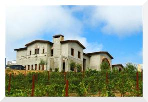 Luxury Vineyard in Los Gatos, CA